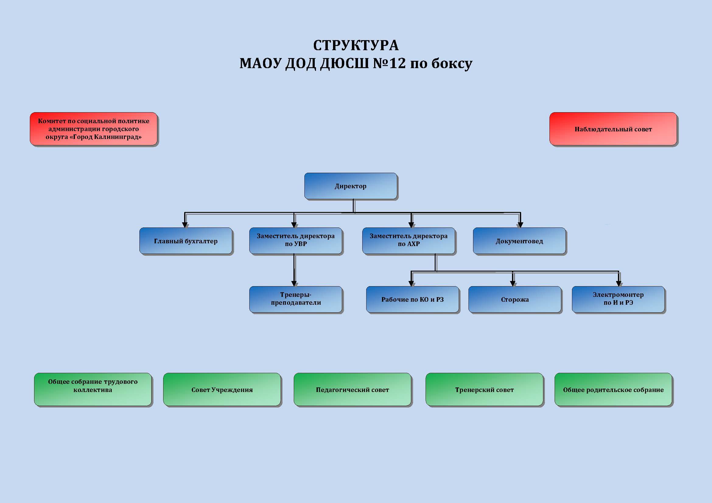 Структура ДЮСШ