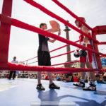 boxingday_24
